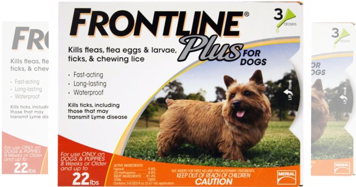 stock image of frontline plus dog treatment