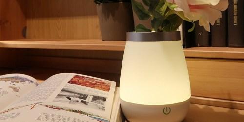 Amazon: Ohuhu 2-in-1 LED Night Light + Vase ONLY $11.99