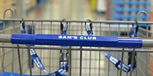 Sam's Club One Day Sale is May 11th (Save BIG on Inflatable Water Slide, Instant Pot, Shark Vacuum & More)
