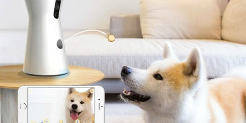Amazon Prime: Furbo Dog Treat Tossing Cam Only $169 Shipped (Regularly $249)