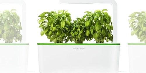 Amazon Prime: Click & Grow Indoor Gardening Kit Just $24 Shipped (Regularly $60)