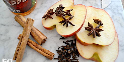 Love the Fall? Time to Get Cozy with Homemade Fall-Inspired Simmering Room Scents