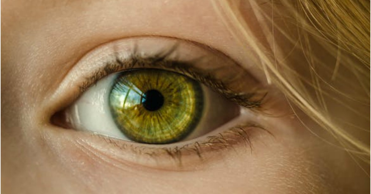 free online eye exam contact prescription 40 value hip2save