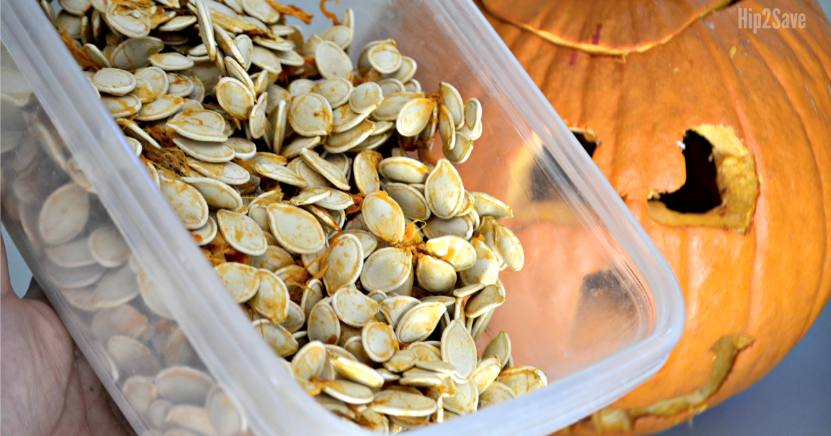holding pumpkin seeds in food storage container