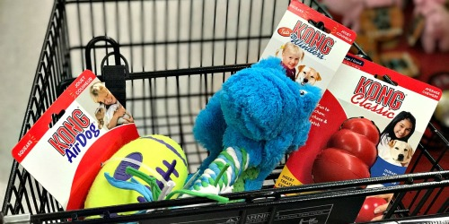 ALL The Best Petco Black Friday Deals 2017