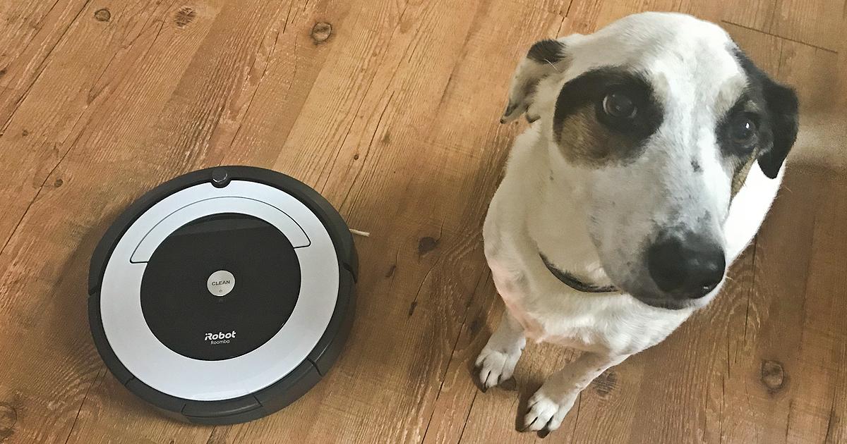 Best Buy Irobot Roomba Robot Vacuum As Low 239 99 Shipped Regularly 300 Hip2save