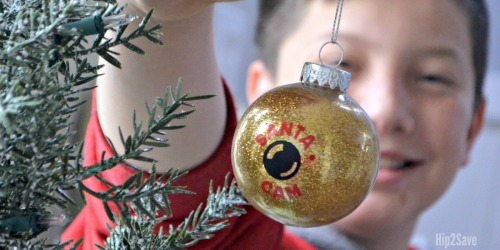 15 Inspiring Ways to Dress Up Dollar Tree Clear Ball Christmas Ornaments