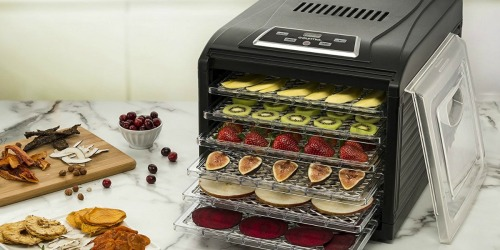 Gourmia 6-Tray Food Dehydrator Just $59.99 Shipped at Best Buy (Regularly $130)