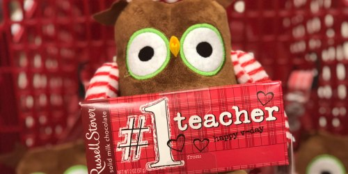 Russell Stover Teacher Valentine Chocolate Bar AND Plush Just $5 (No Coupons Needed)