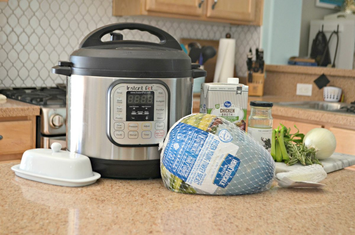 instant pot with small turkey in front