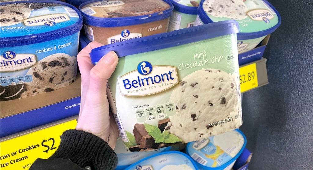 aldi belmont mint chocolate chip ice cream