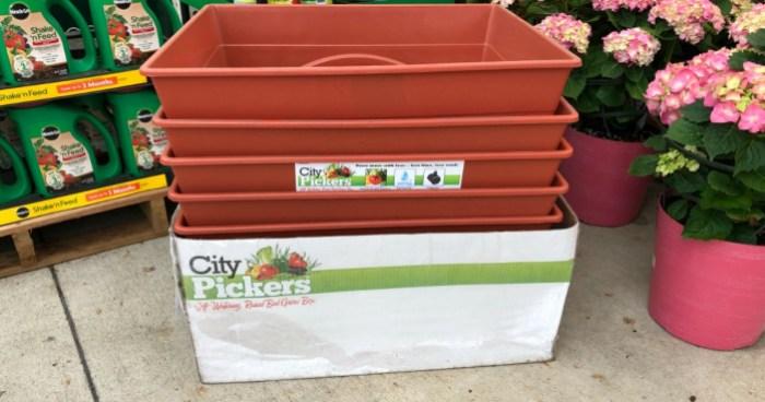 Grow A Garden On Your Patio Or Deck