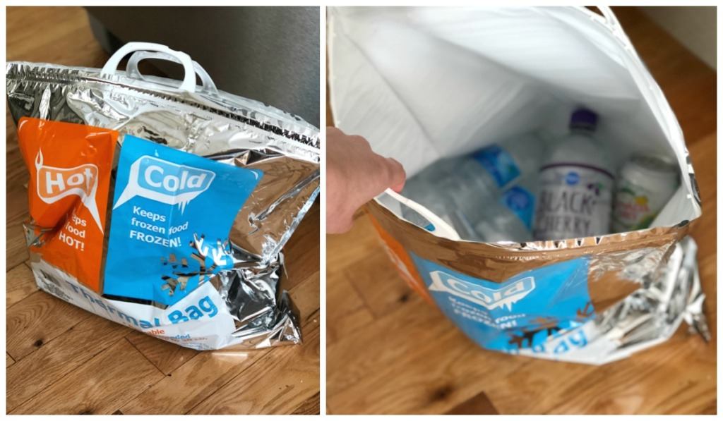 dollar tree vacation hacks insulated bags hip2save