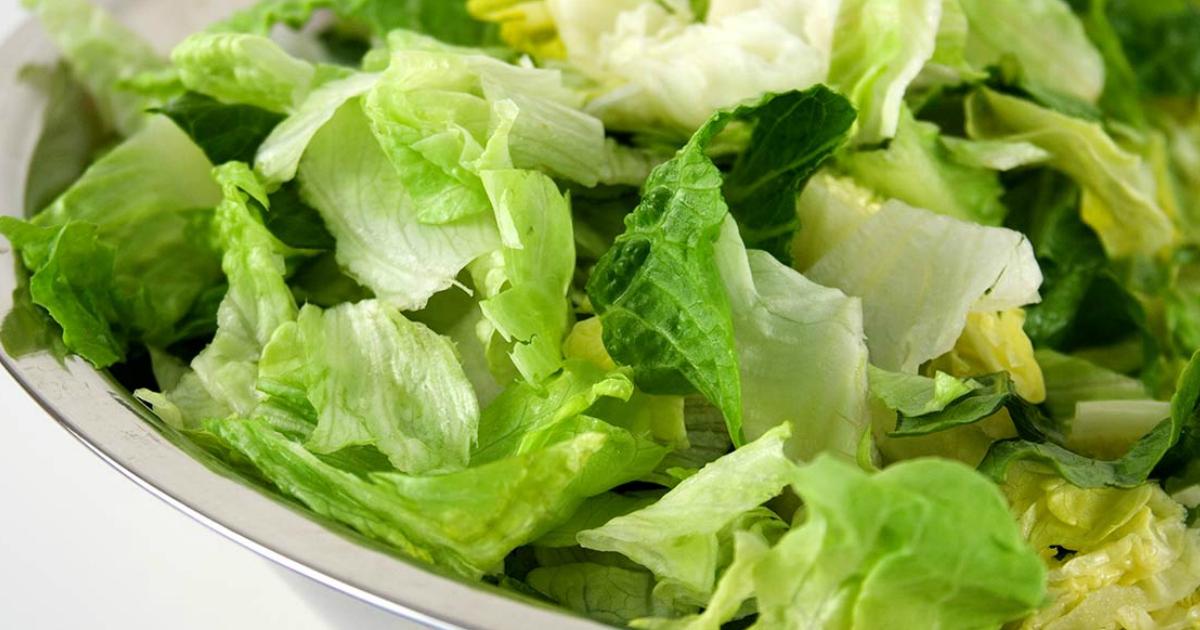 closeup of Romaine Lettuce in a bowl