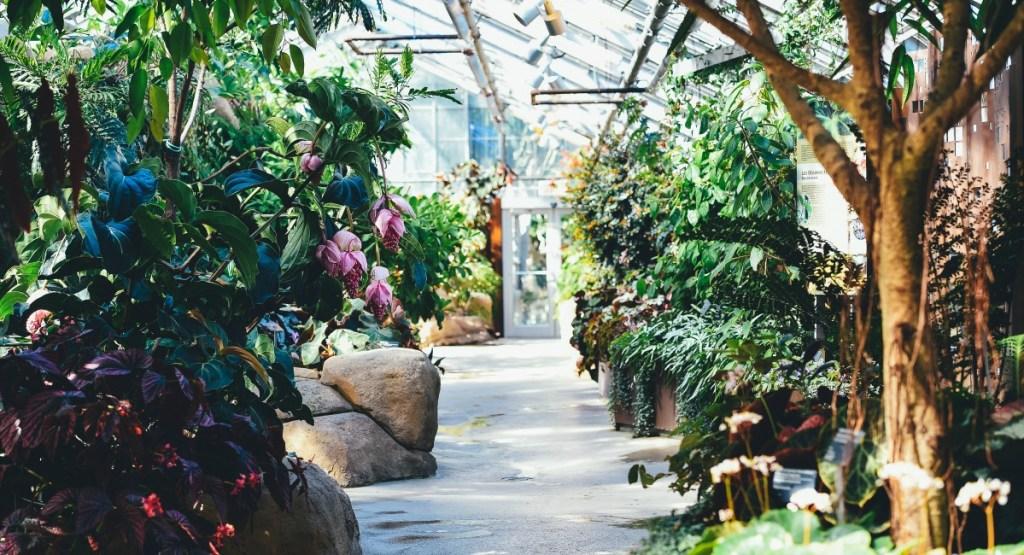 free summer activities for kids — botanical gardens