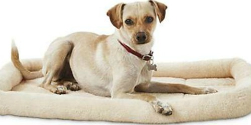 Up to 60% Off Dog Beds + FREE Shipping at Petco