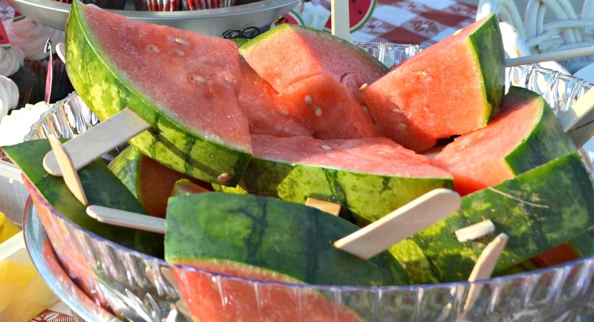 melon recall possible salmonella contamination – fresh melon on Popsicle sticks
