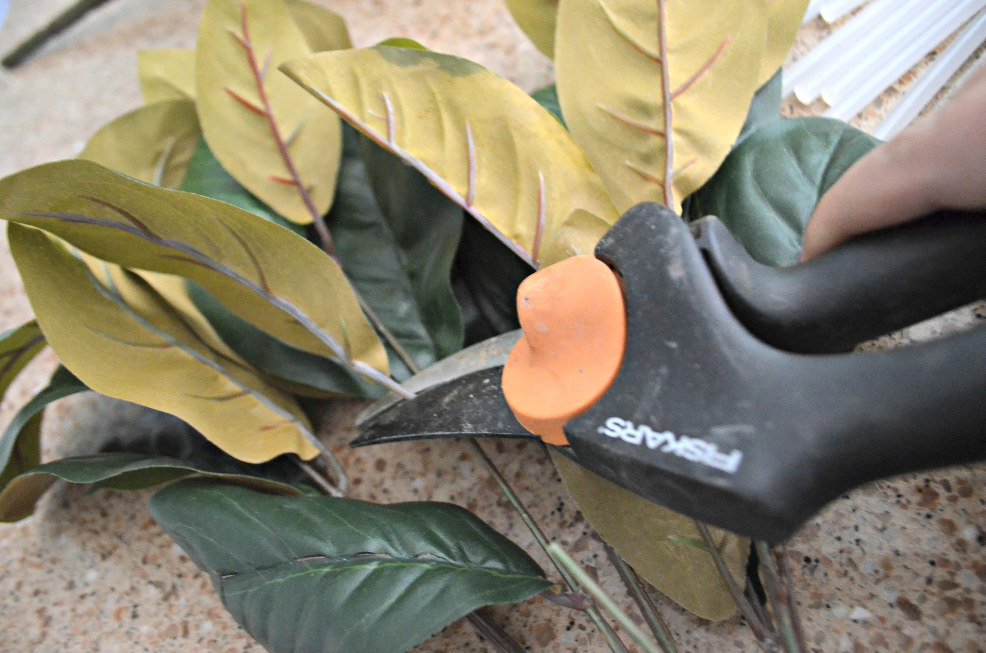 Prepare the magnolia leaf stems.