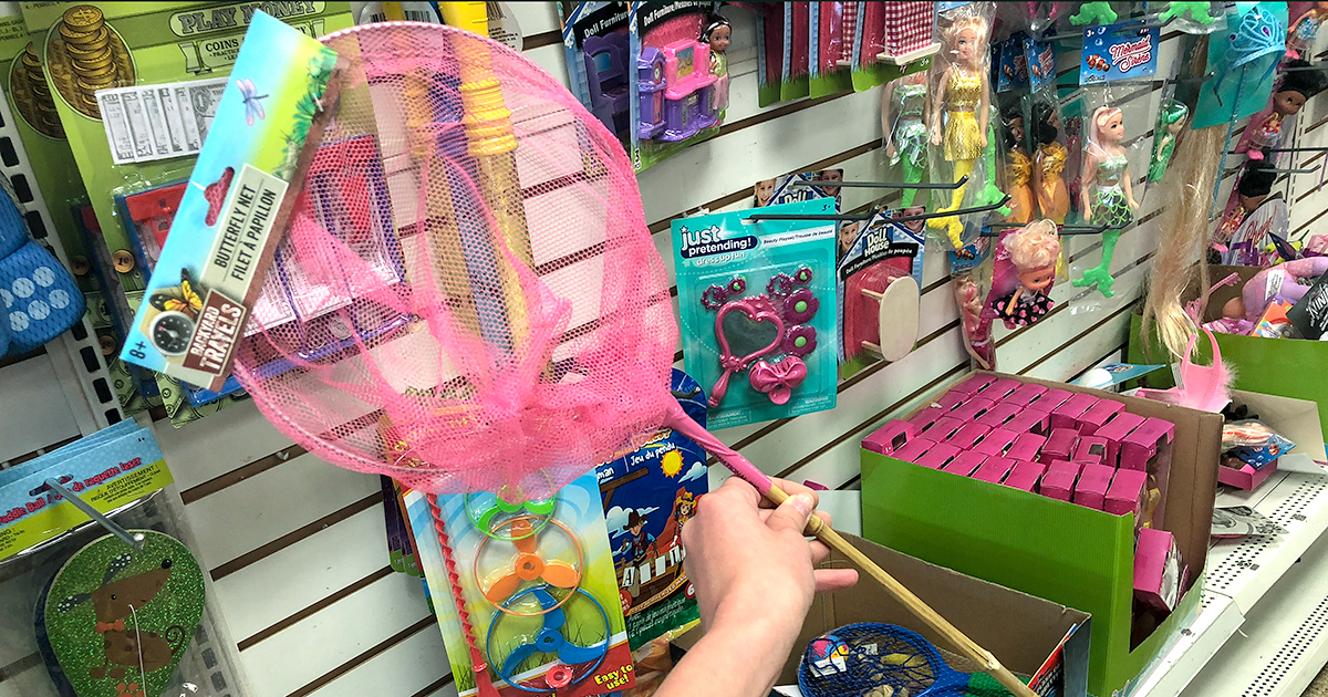 dollar tree pool supplies and fun hacks — butterfly net for the pool