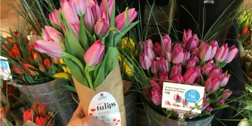 Whole Foods Market 20-Stem Bunch of Tulips ONLY $10 For Amazon Prime Members