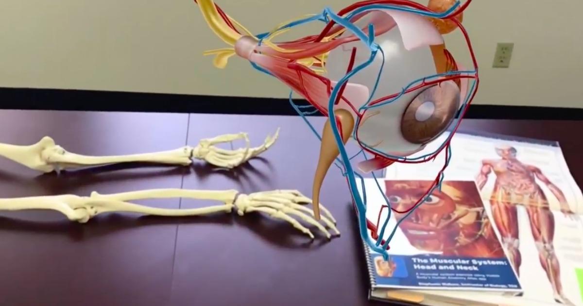 Human Anatomy App screen shot