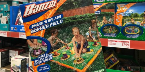 Great Deals on Outdoor Water Toys & Inflatables at ALDI (Banzai, Intex & More)
