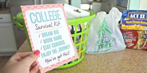 Dollar Tree DIY College Survival Kit & Free Printable Card