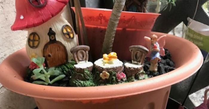 Summertime Calls for a Fairy Garden