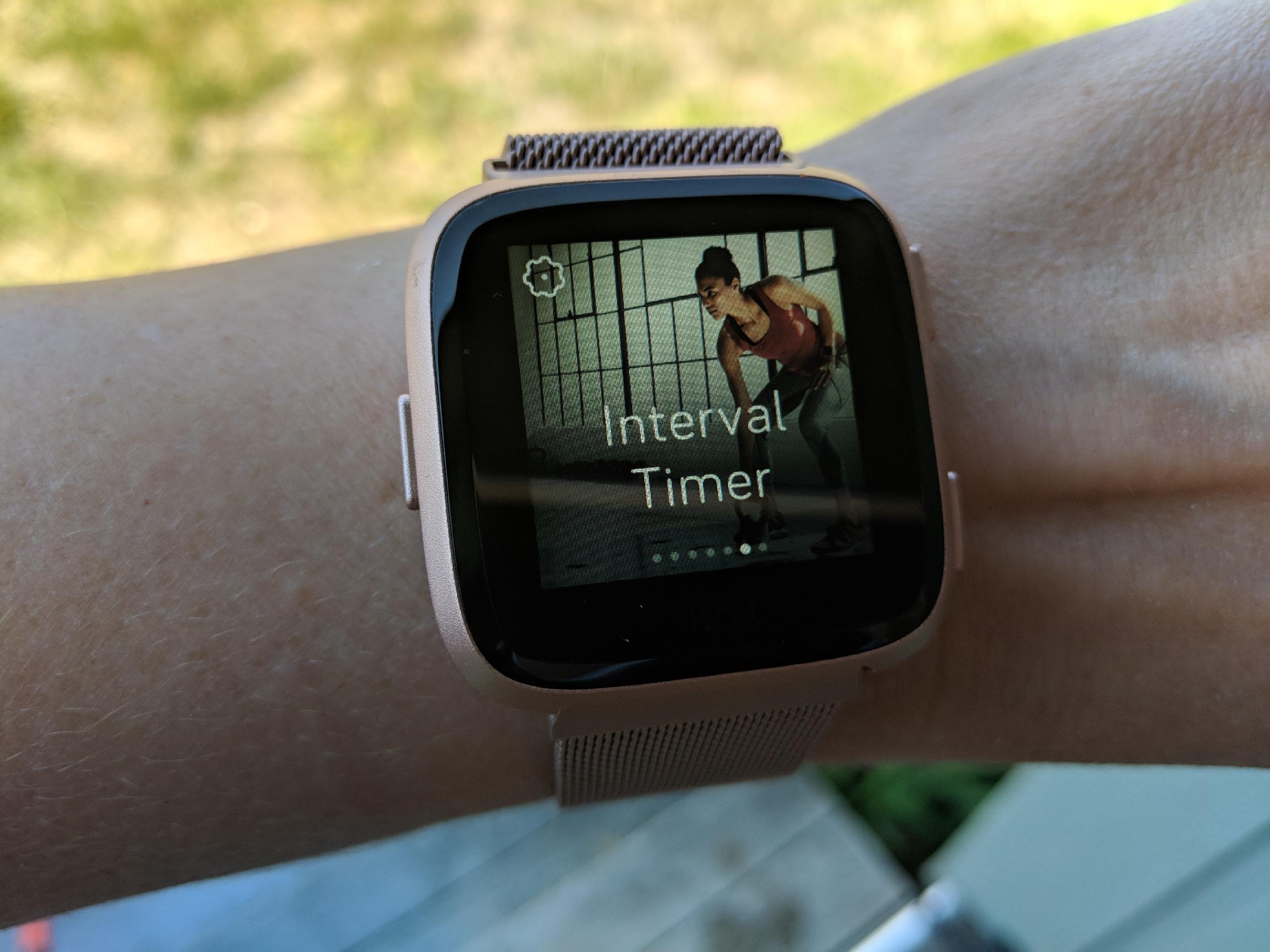 apple watch or fitbit versa? - Fitbit versa interval trainer