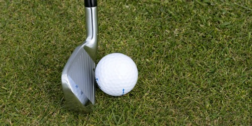 45 Top Flite D2+ Golf Balls ONLY $25 Shipped (Regularly $54)