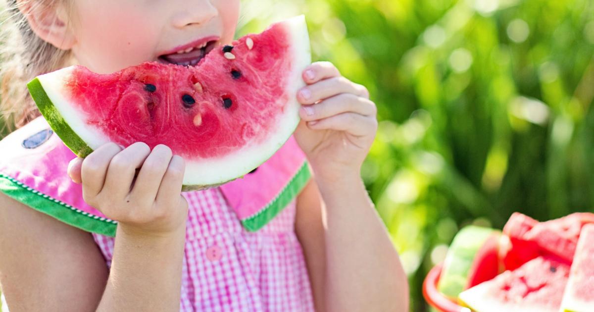 melon recall possible salmonella contamination – fresh melon sliced
