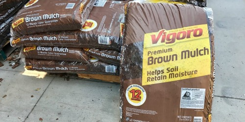 BIG Mulch Bags Only $2 at Home Depot or Lowe's + More Garden Deals