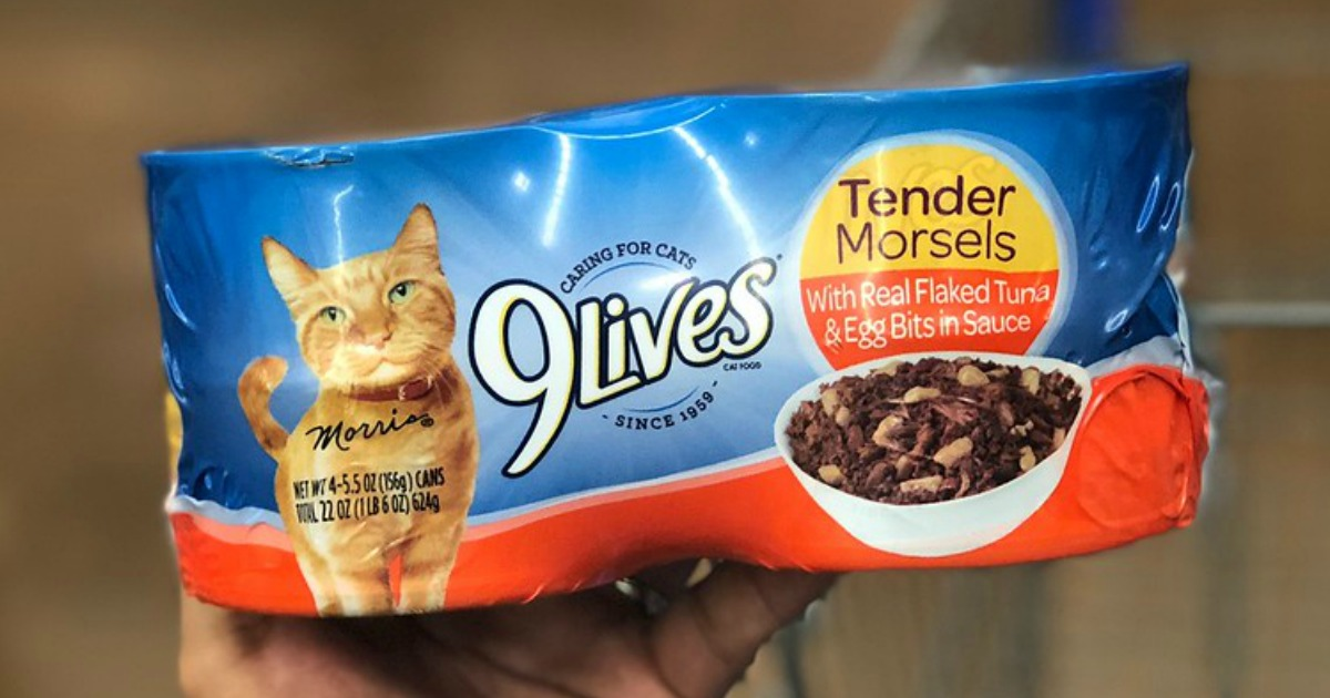 Hop On Over To Amazon Where You Can Score SIX 9 Lives Tender Morsels With Real Ocean Whitefish Canned Cat Food 4 Packs For Only 632