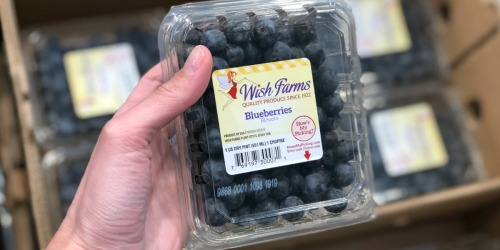 ALDI Deals: Blueberries as Low as $1.49 AND Avocados Only 39¢ Each