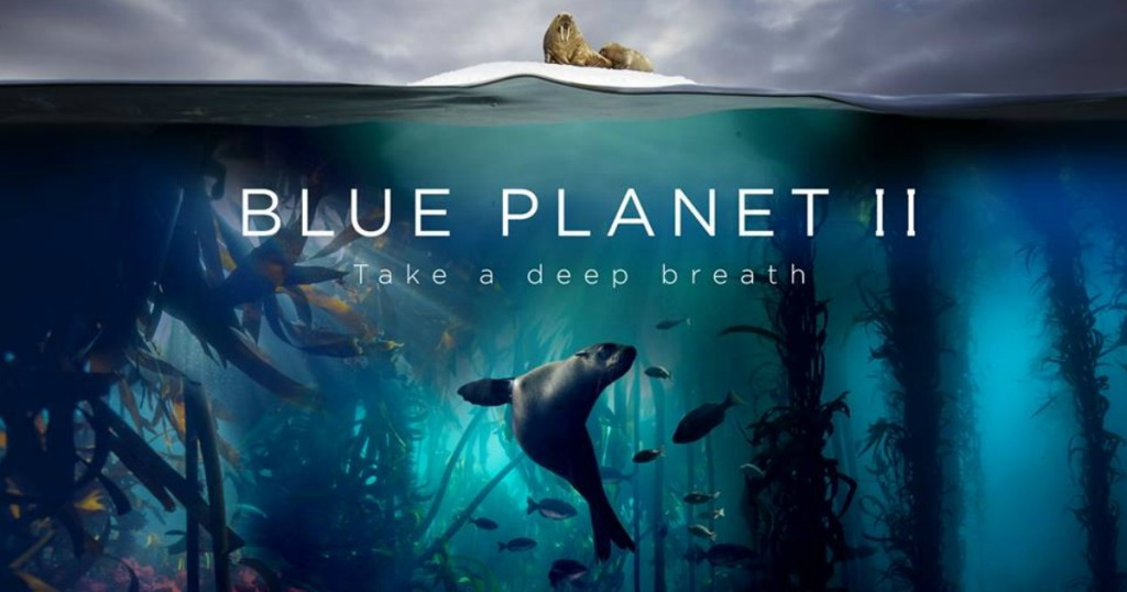 blue planet ii promotional image showing sea creatures