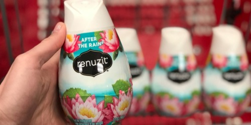 Renuzit Gel Air Freshener 6-Pack Only $3.37 Shipped at Amazon (Just 56¢ Each)