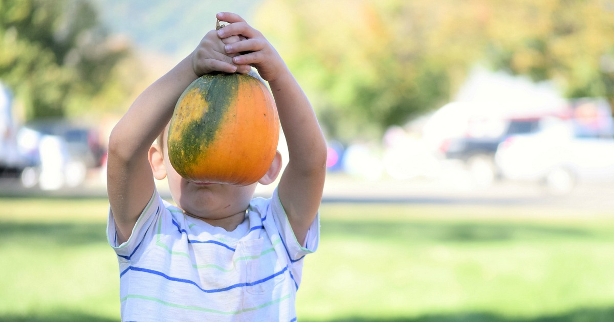 places for free fun fall activities — boy holding up pumpkin to face