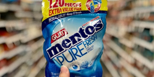 FOUR Mentos Gum Large Pouches Only $16.79 Shipped (Just $4 Per Pouch)