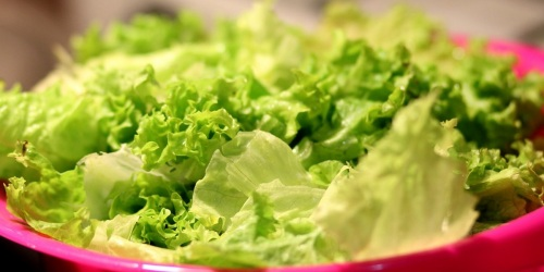 Over 75,000 Pounds of Salad Products Recalled Due to Possible E. Coli Contamination