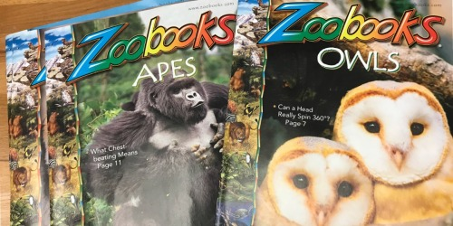 Up to 80% Off Zoobooks & Zoobies Magazine Subscriptions (Great Gift Idea For Kids)