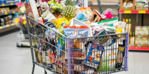 ALDI Adds Nationwide Online Grocery Delivery Service – Just in Time for Thanksgiving
