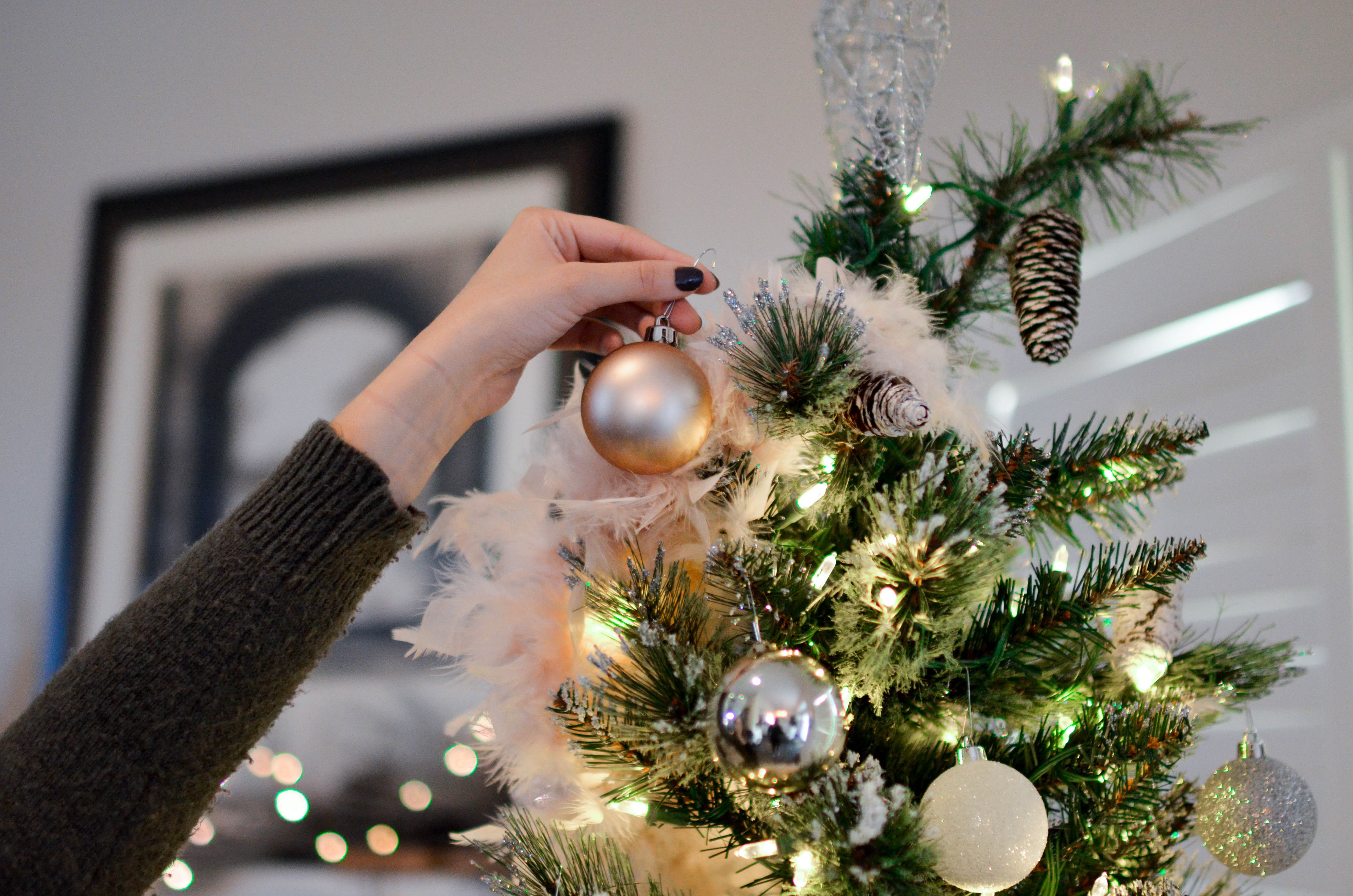 Amazon selling and shipping live Christmas trees this holiday season, like this one getting decorated