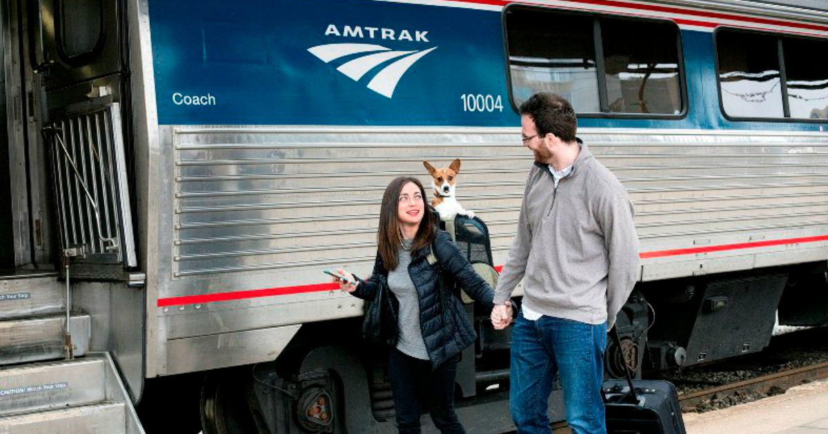 woman and man walking hand in hand with dog by amtrak train
