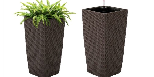 Self Watering Wicker Planter Only $44.99 Shipped + Get $40 Back in Points at Sears