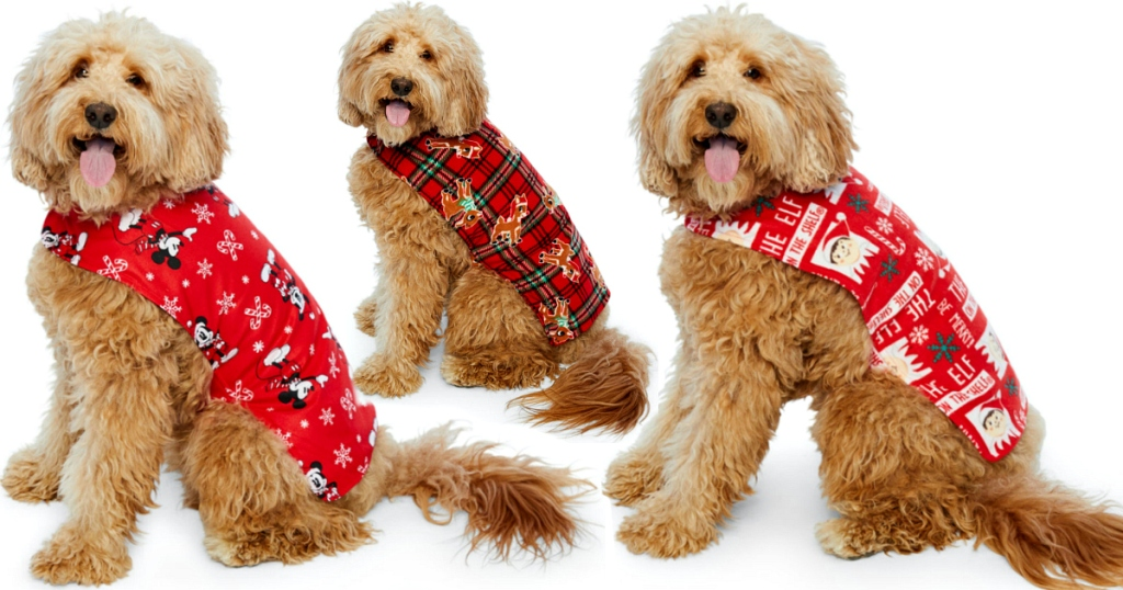 Dog Holiday Costumes at JCPenney