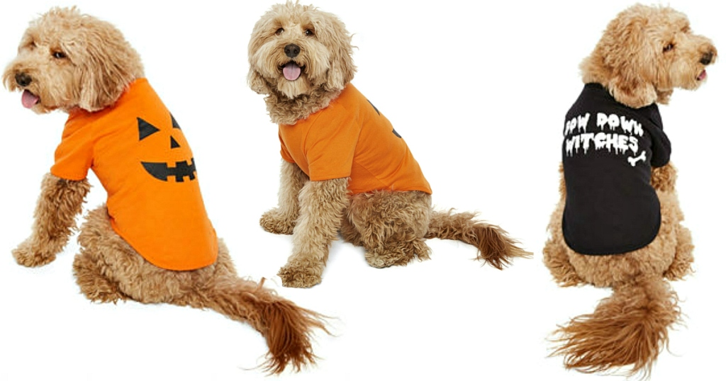 Dog Shirts at JCPenney