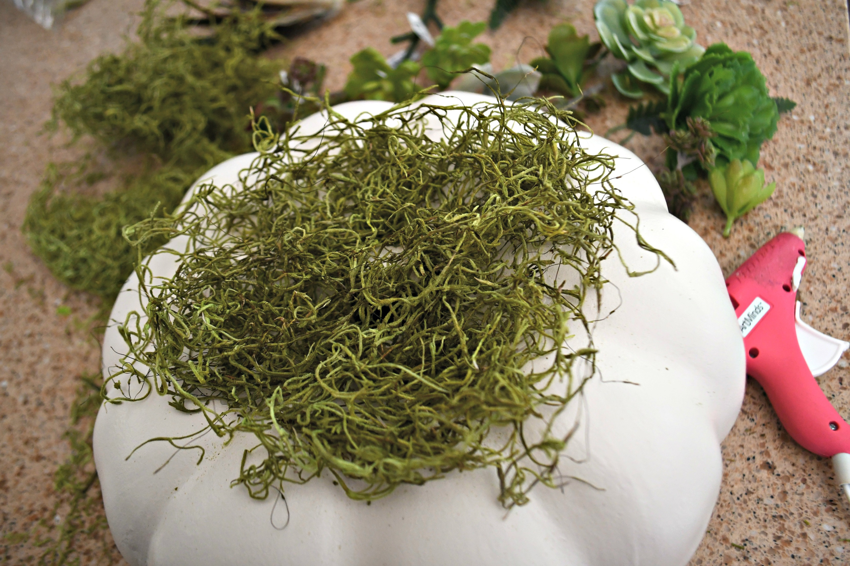 style your fall table with this DIY succulent centerpiece idea - here, adding moss