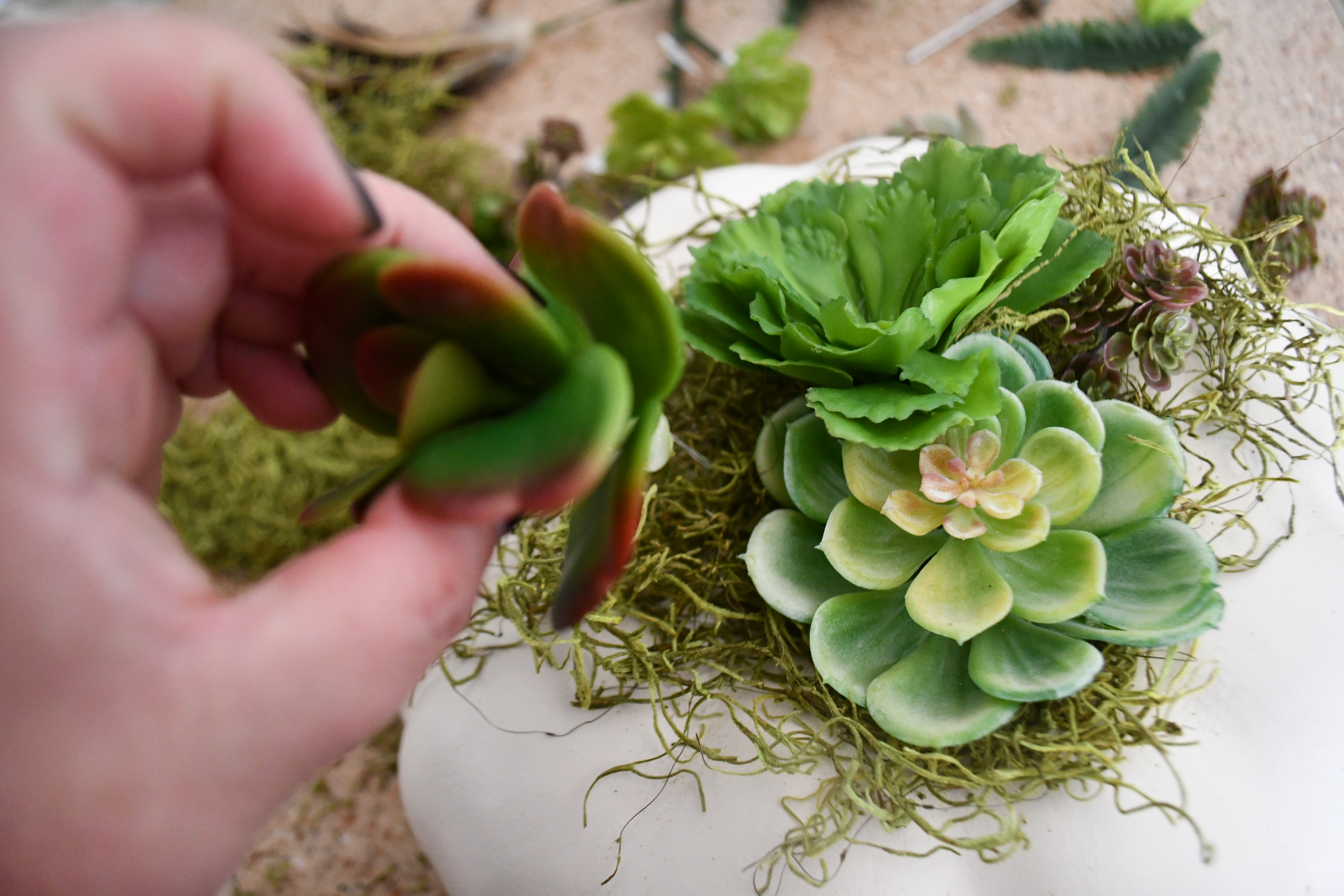 style your fall table with this DIY succulent centerpiece idea - here, adding succulents to the moss