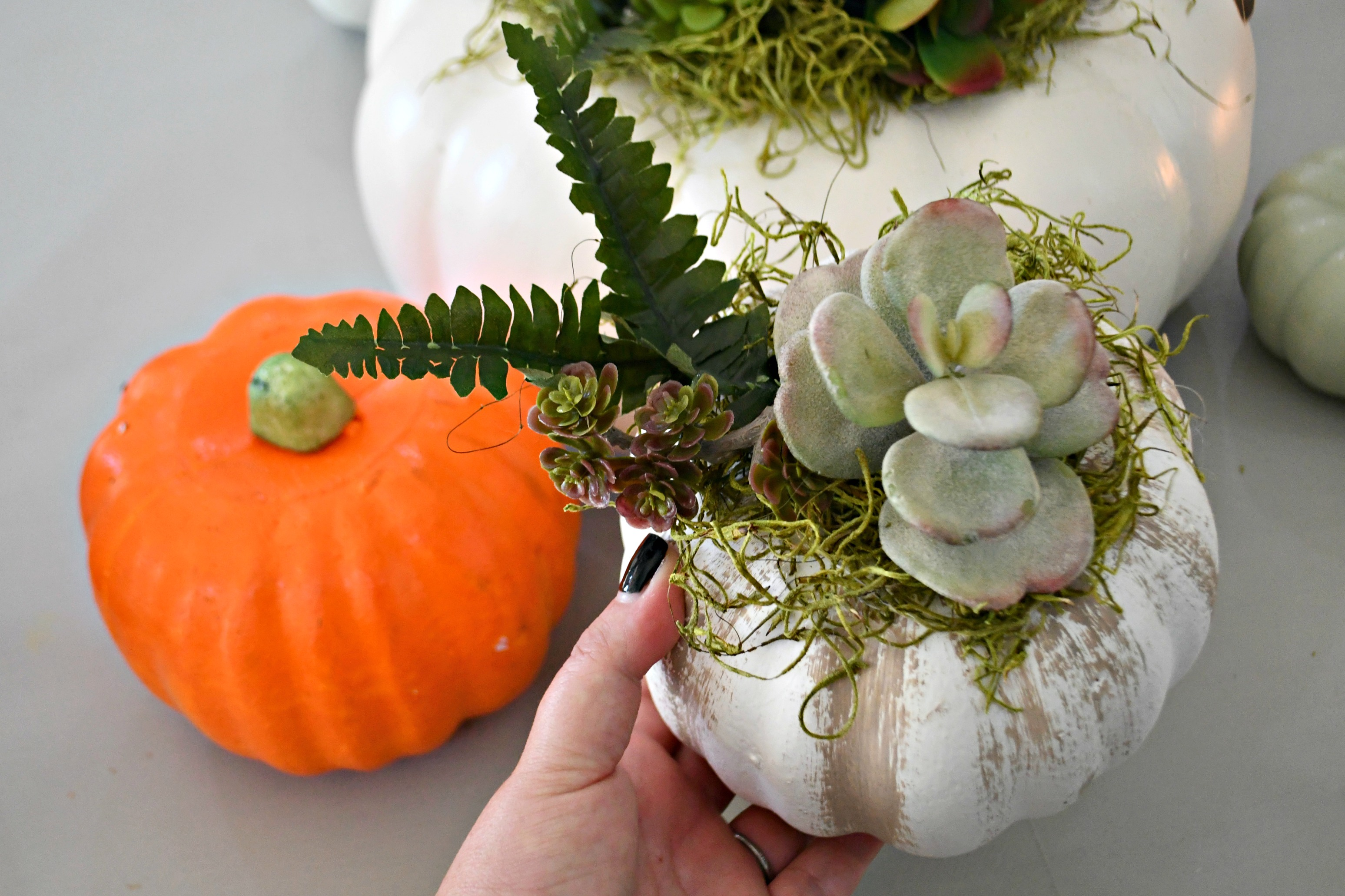 style your fall table with this DIY succulent centerpiece idea - here, a smaller version