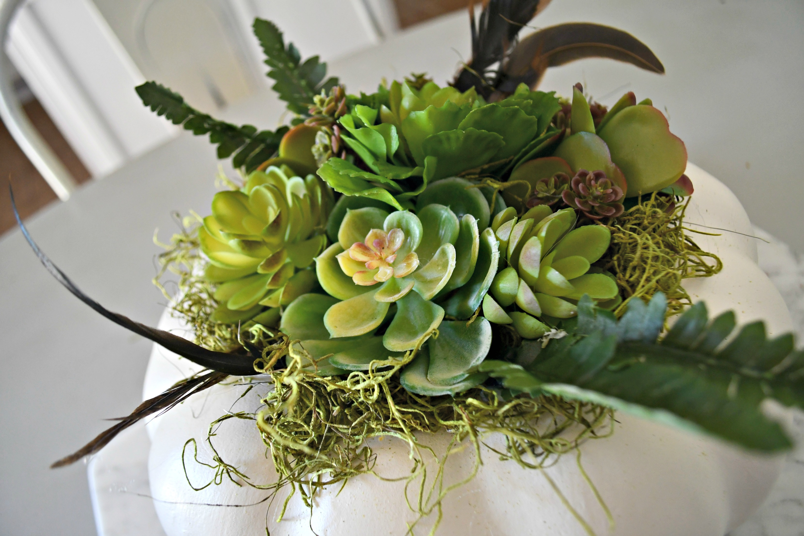 style your fall table with this DIY succulent centerpiece idea - here, closeup of the finished pumpkin